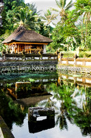 Tirta Empul Temple Reflection-Bali
