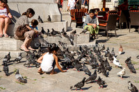 Playing with Pigeons-Dubrovnik, Croatia