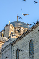 Blue Mosque Dome-Istanbul, Turkey
